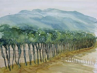 """""""Allee in Paliano"""", 2007, Aquarell, 40 x 50 cm"""